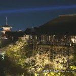 【2018年】清水寺の夜桜の見頃とライトアップの期間と時間はいつ?混雑を避けるには?